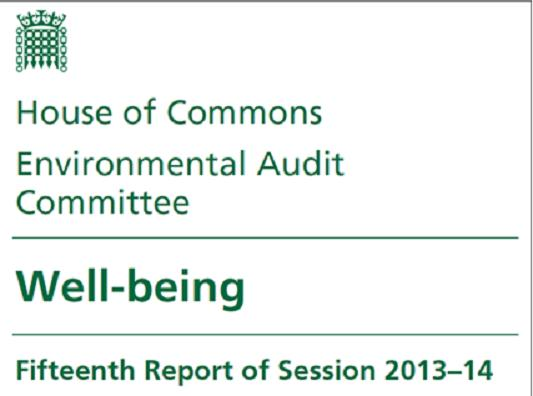 Government Publishes Response to the Environmental Audit Committee Inquiry on Wellbeing